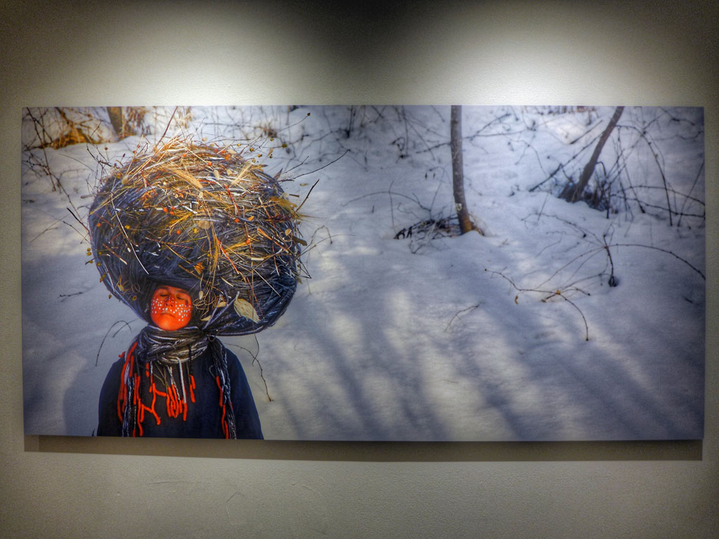 Dreamcatcher by Meryl McMaster