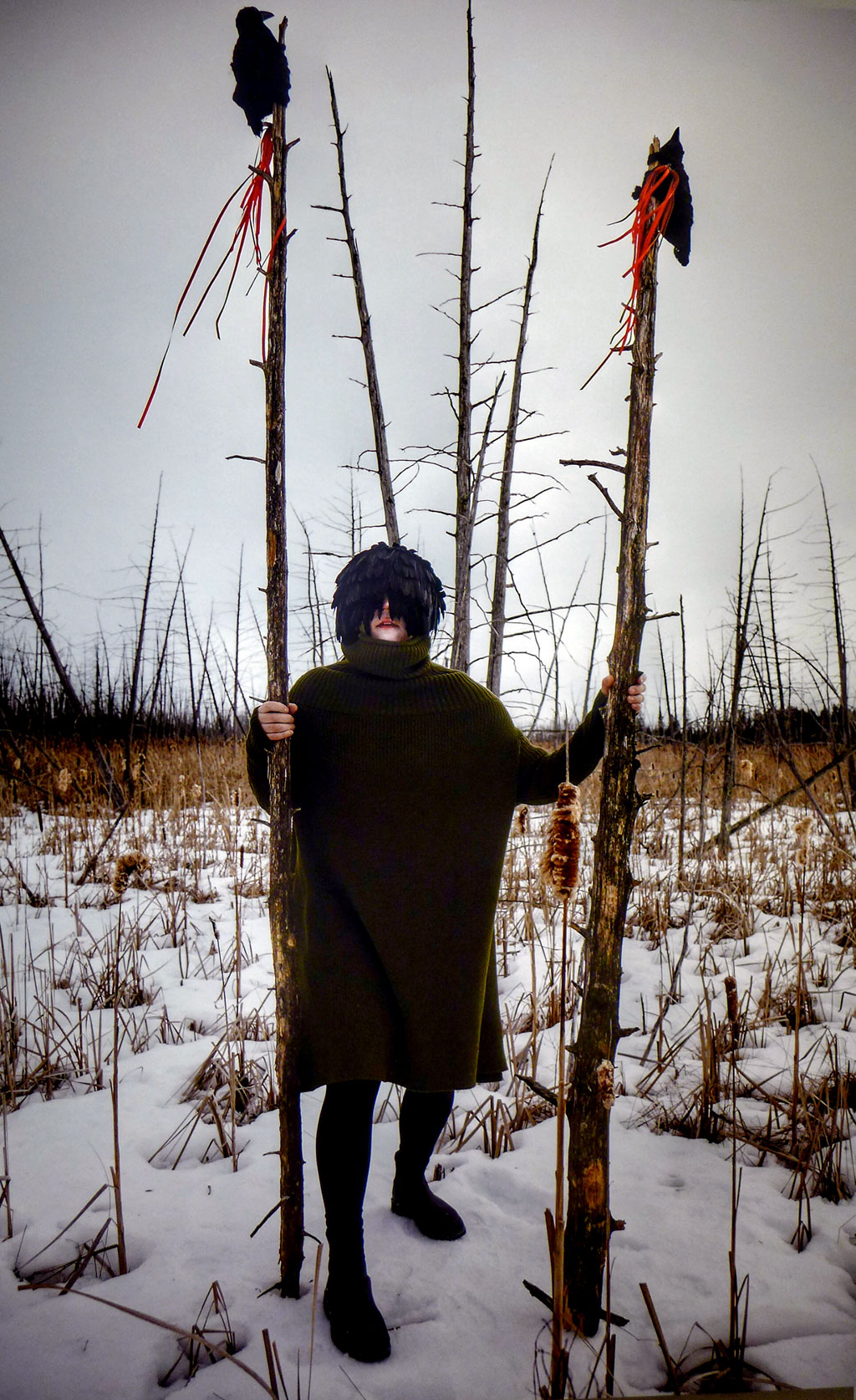 Sentinel's Sight by Meryl McMaster